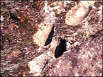 [Bild: 350.000 Jahre alte Fußspuren, geklaut von der BBC]
